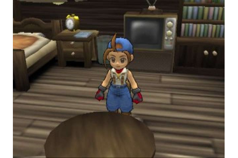 Harvest Moon: Save The Homeland (2001) by Victor ...