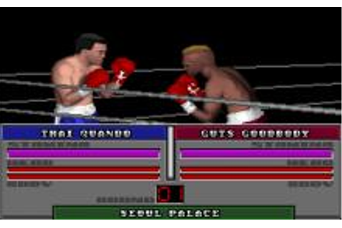 ABC's Wide World of Sports Boxing Download (1991 Sports Game)
