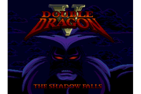 Double Dragon V - The Shadow Falls (USA) ROM