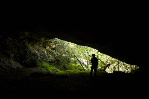 Into the Caves: 'The cave you fear to enter holds the ...
