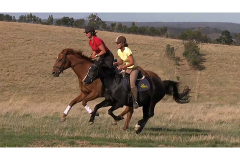 Our canter-gallop in slow motion - YouTube