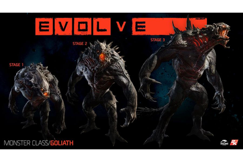 What To Expect from Evolve