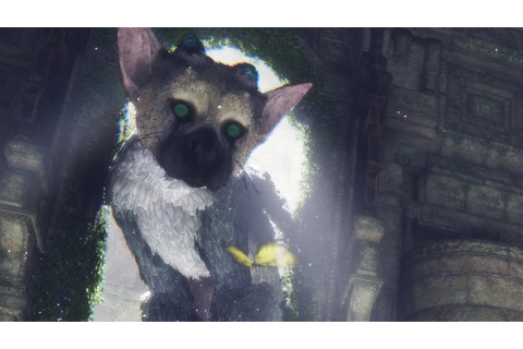 The Last Guardian: Trico is Absolutely Adorable - IGN ...