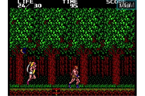 Danan the Jungle Fighter for Sega Master System - The ...