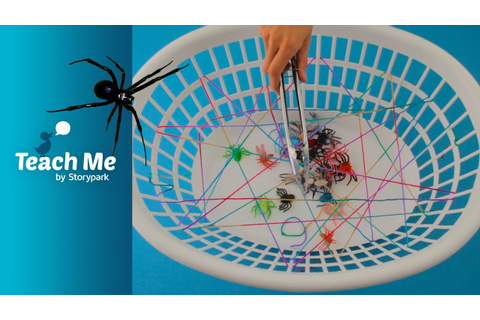Spider-web Game - YouTube