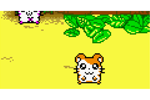 Game Boy / GBC - Hamtaro: Ham-Hams Unite - The Spriters ...