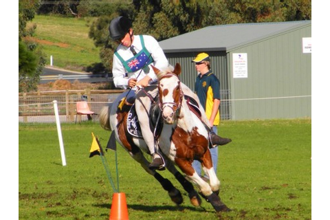The Virtual Equestrian - State Pony Club Mounted Games ...