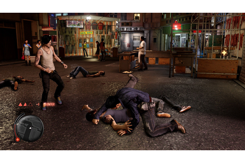 Buy Sleeping Dogs ( PC Game ) Online at Best Price in ...