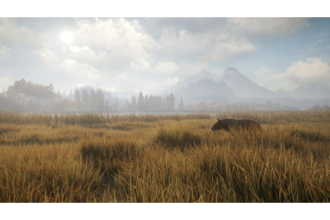 theHunter: Call of the Wild [Steam CD Key] for PC - Buy now
