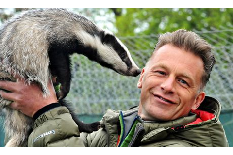Springwatch's Chris Packham: 'Live dung analysis would be ...