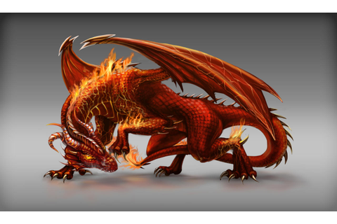 Fire Dragon game npc design by FallFox on DeviantArt