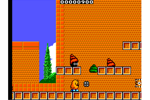 Play New Zealand Story, The Sega Master System online ...