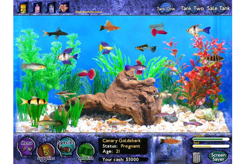 Fish Tycoon > iPad, iPhone, Android, Mac & PC Game | Big Fish