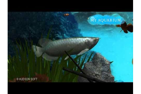 New PS3 Game: My Aquarium HD.(Asian Arowana big fish in ...