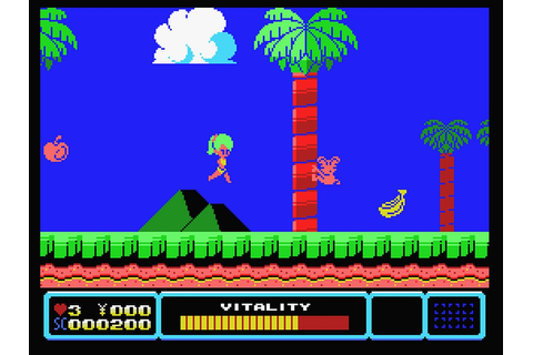 Indie Retro News: Tina's Adventure Island - MSX game ...