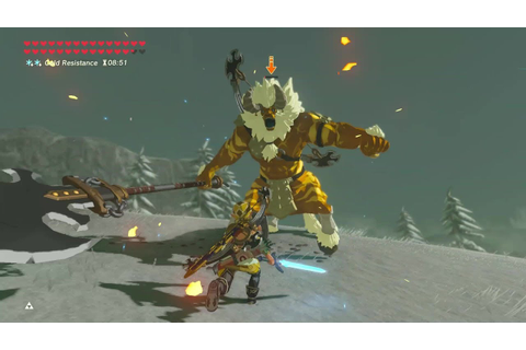 Breath of the Wild: Gold Lynel Hunter | Epic hunt on Snow ...