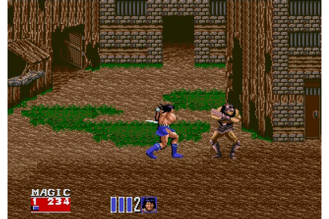Neko Random: Things I Like: Golden Axe II
