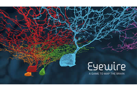 EyeWire | A Game to Crowdsource Brain Mapping ...