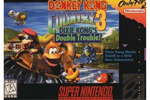 Donkey Kong Country 3: Dixie Kong's Double Trouble! (Video ...