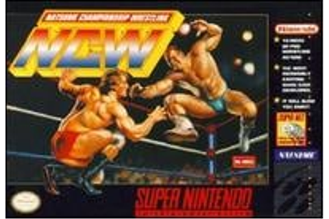 Natsume Championship Wrestling Review (SNES) | Nintendo Life