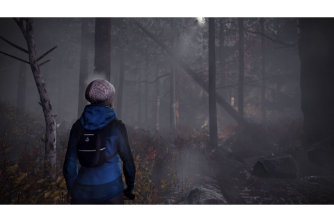 Upcoming Horror Game Will Take You Through the Woods ...