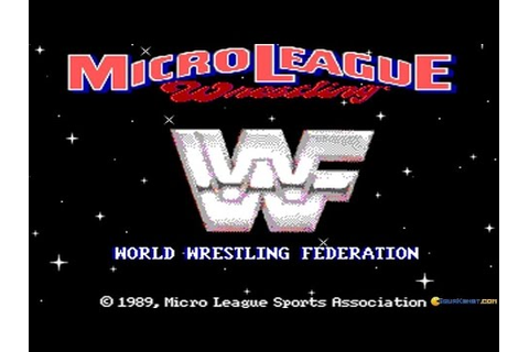Micro League Wrestling 2 gameplay (PC Game, 1989) - YouTube