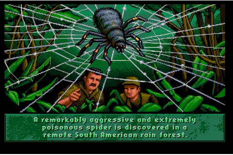 Deadpan Flook's Gruesome Games!: Arachnophobia (Commodore ...