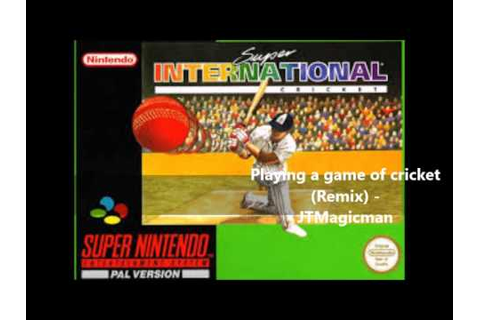 Super International Cricket - Playing a game (Remix) - YouTube