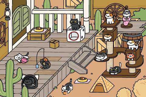 Neko Atsume: How to Collect All Rare Cats | Touch, Tap, Play