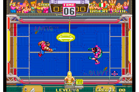 Windjammers / Flying Power Disc ROM