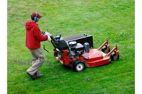 What are the Different Types of Lawn Mower Games?