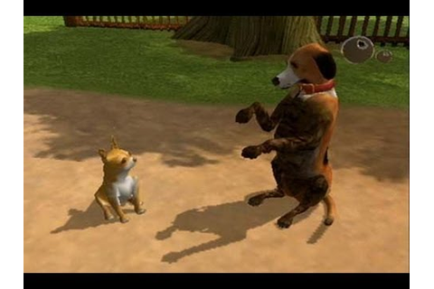 CGRundertow DOG'S LIFE for PlayStation 2 Video Game Review ...