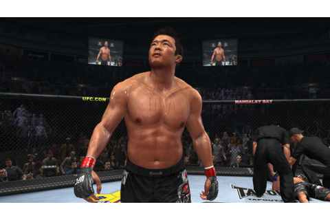 Download free Ufc Undisputed 2011 Pc Game Free - clearbackup