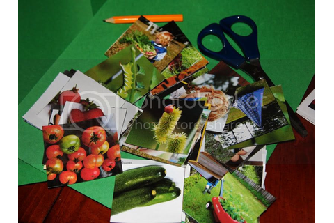 Gardening Without Skills: Garden Memory Game for Kids