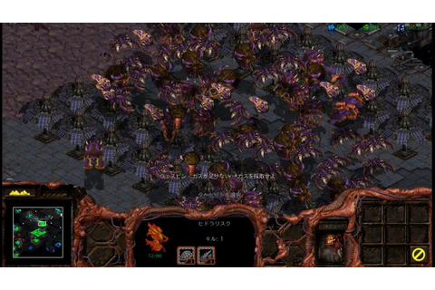StarCraft BroodWar Final Mission Zerg 10 - Omega - YouTube