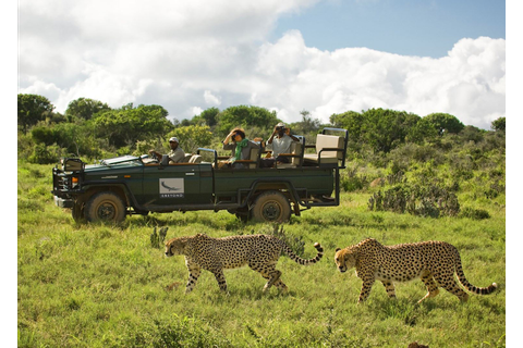 Kwandwe Game Reserve, South Africa | Audley Travel