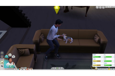 Les Sims 4 : Chiens et Chats – Game Side Story