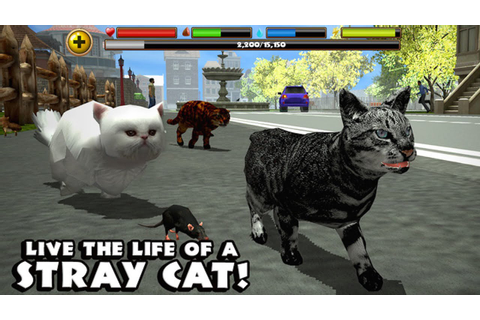 Stray Cat Simulator By Gluten Free Games -Compatible with ...