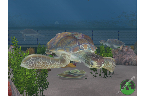 Zoo Tycoon 2: Marine Mania - Download Free Full Games ...