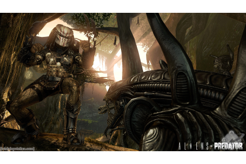 Aliens Vs. Predator HD Wallpaper | Background Image ...