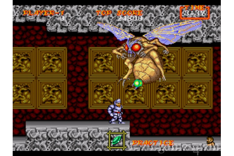 Ghouls N Ghosts Download on Games4Win