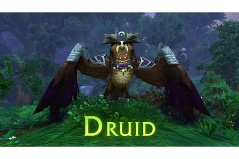 World of Warcraft : Druid Class Mount - YouTube