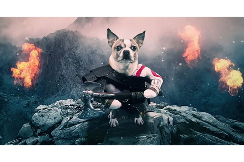 Here's a fun God of War video starring dogs called Dog of War