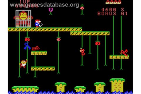 Donkey Kong Junior - Coleco Vision - Games Database