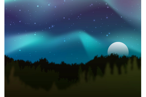 Northern Lights Vector Forest - Download Free Vectors ...