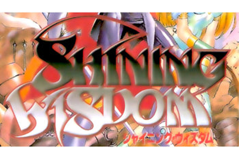 Shining Wisdom Import Sega Saturn Game | PJ's Games