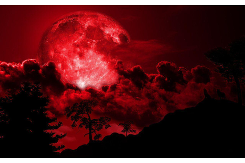 Red Moon Wallpapers - Wallpaper Cave