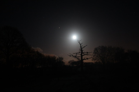 Moon & Mars Rising | Flickr - Photo Sharing!