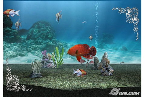 fish tank games video - Real time fish tank game 2017 ...