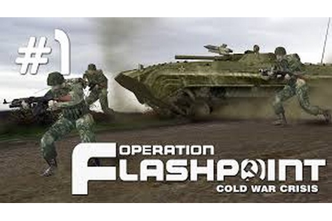 Operation Flashpoint Cold War Crisis - Free Download Full ...